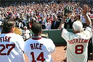 yaz, fisk and rice