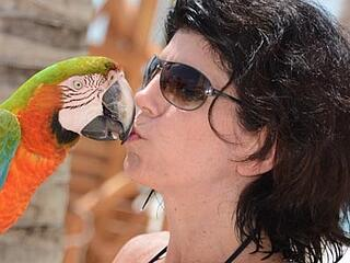 Parrots-BeachHawkersArticle-2.jpg