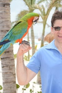 Parrots-BeachHawkersArticle_3.jpg